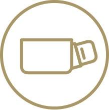 Ryggficka icon