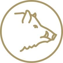 Vildsvinsjakt icon